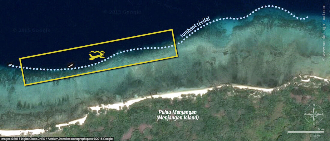 Carte snorkeling à Pulau Menjangan, Bali