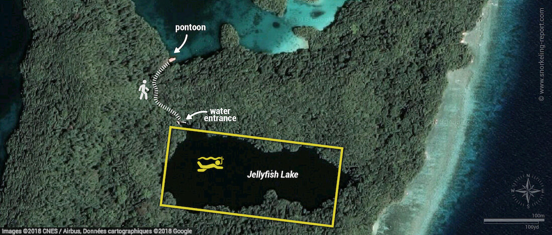 Jellyfish Lake snorkeling map, Palau