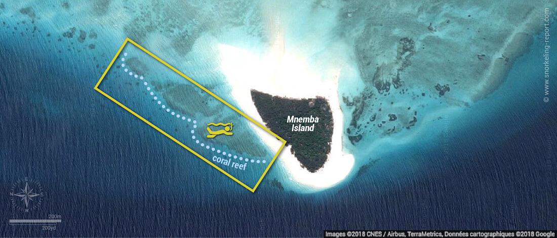 Mnemba snorkeling map
