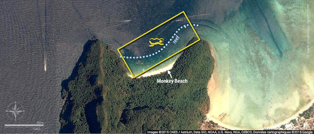 Monkey Beach snorkeling map, Phi Phi Islands