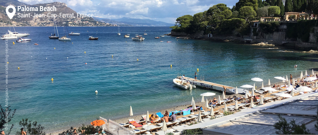 Snorkeling at Paloma Beach, Cap Ferrat, French Riviera