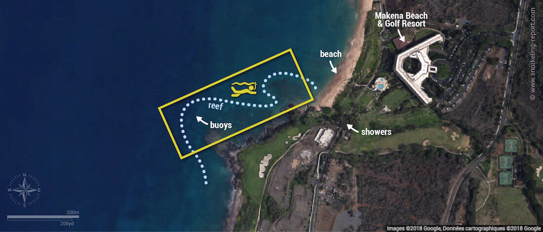 Turtle Town Maui snorkeling map