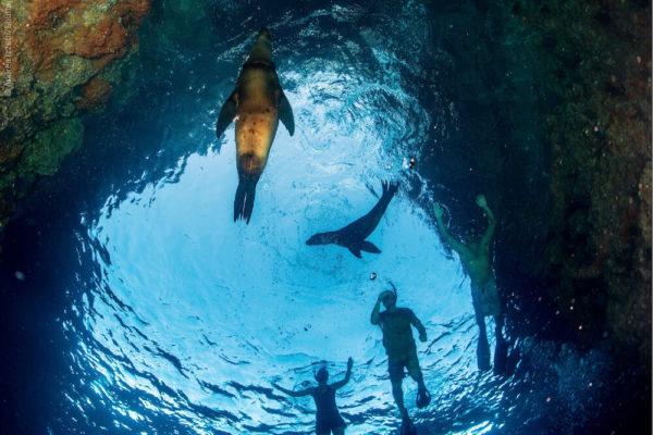 Plus belles destinations snorkeling