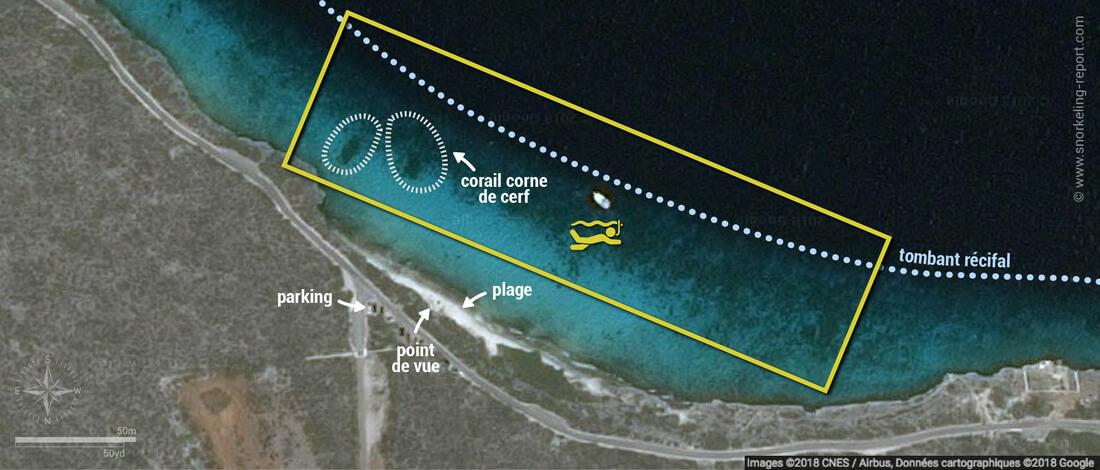 Carte snorkeling à 1000 Steps, Bonaire