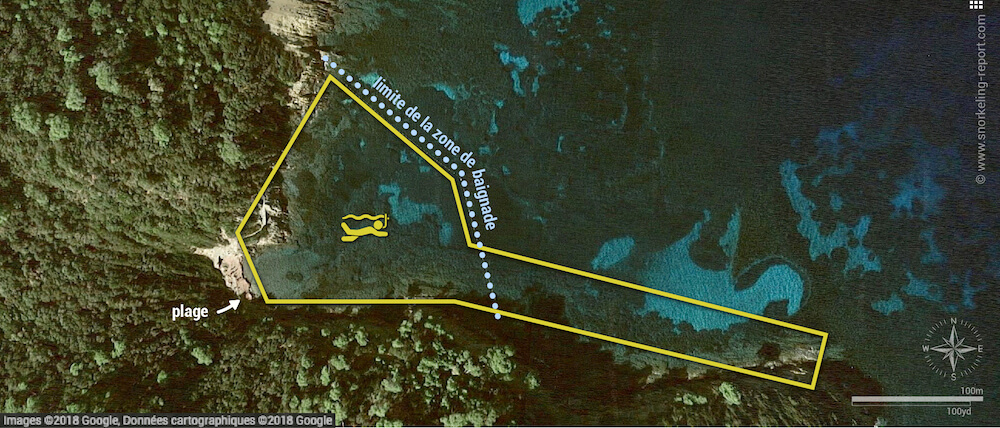 Carte snorkeling à l'Anse de la Fausse Monnaie, Port Cros