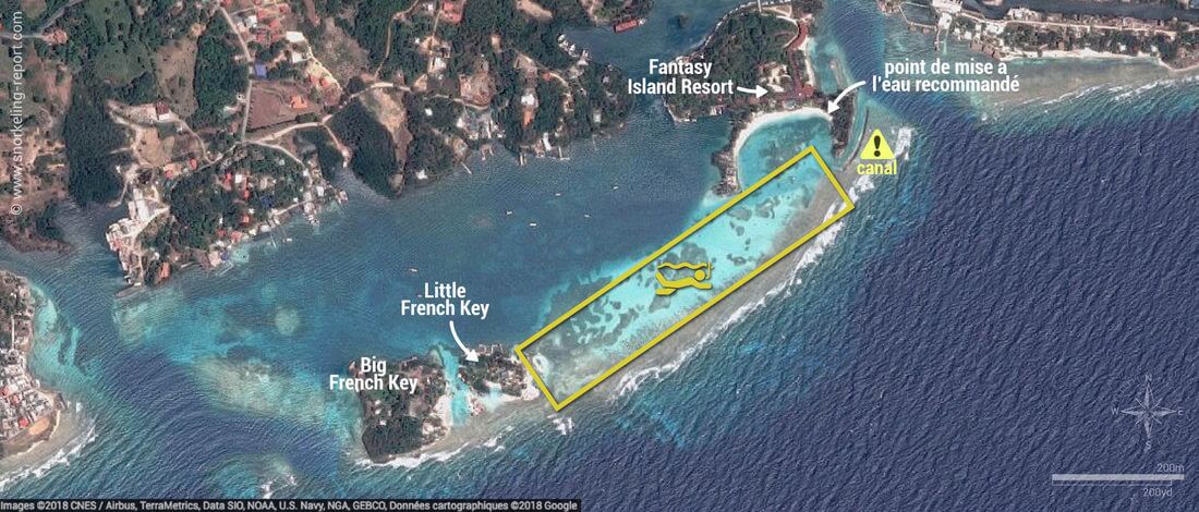Carte snorkeling à French Key, Roatan