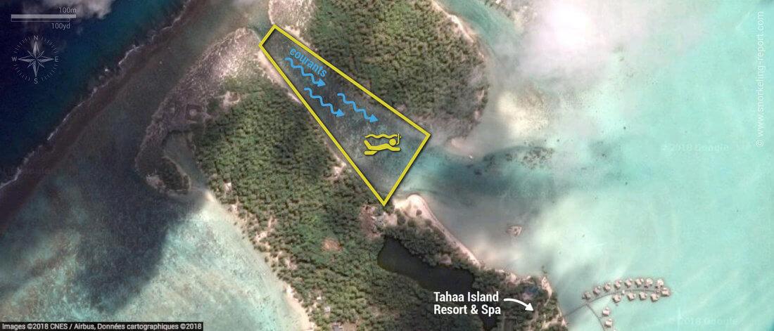 Carte snorkeling au Jardin de Corail, Tahaa