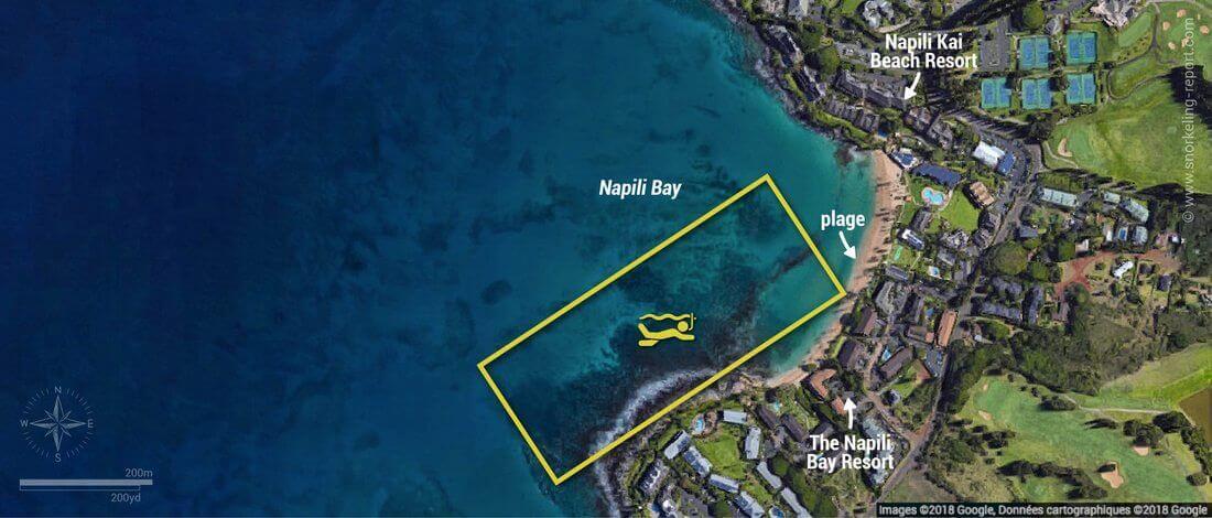 Carte snorkeling à Napili Bay, Maui, Hawaï
