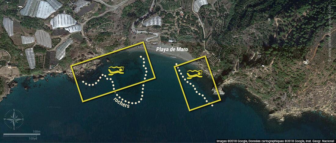 Carte snorkeling à Playa de Maro, Espagne