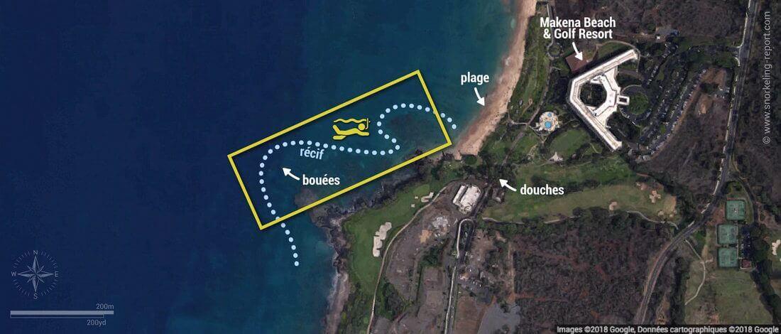 Carte snorkeling à Turtle Town, Maui, Hawaï