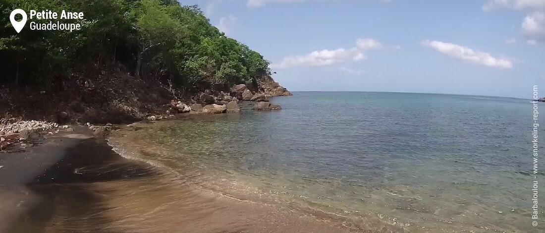 Petite Anse beach, Guadeloupe snorkeling