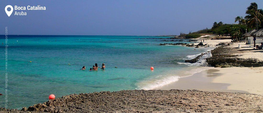 Plage de Boca Catalina, snorkeling à Aruba