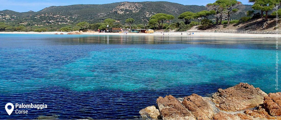 Snorkeling à la plage de Palombaggia