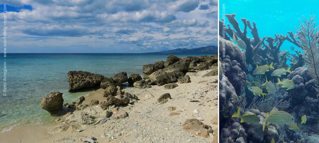Le récif corallien de Punta Perdiz, à Cuba