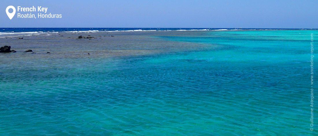 Vue sur le récif corallien de French Key, Roatan