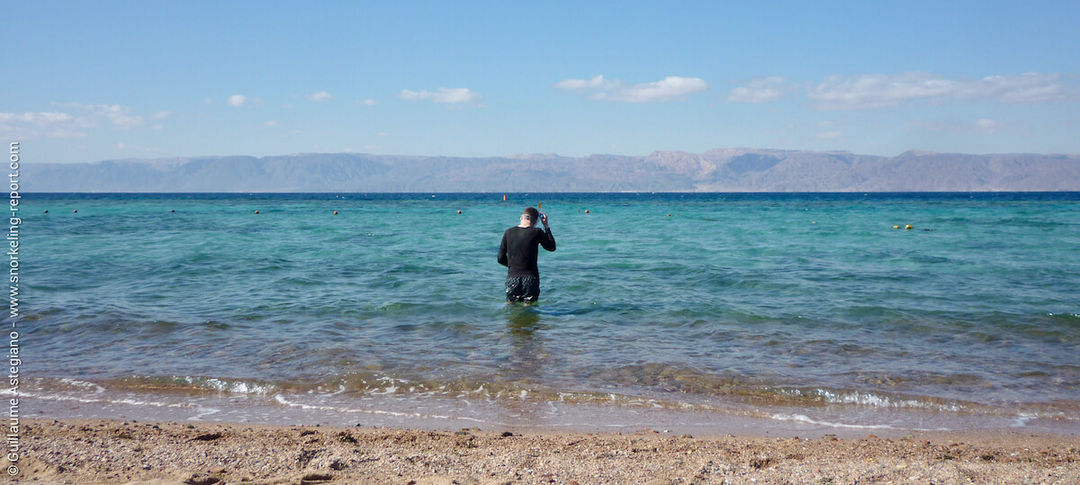 Shore snorkeling in Aqaba, Jordan