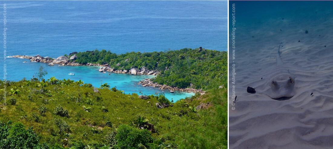 Snorkeling à l'Anse Lazio, sur l'île de Praslin