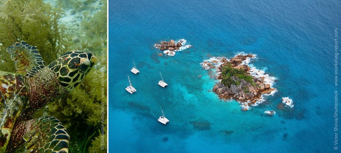 Les meilleurs spots de snorkeling à Praslin, Seychelles