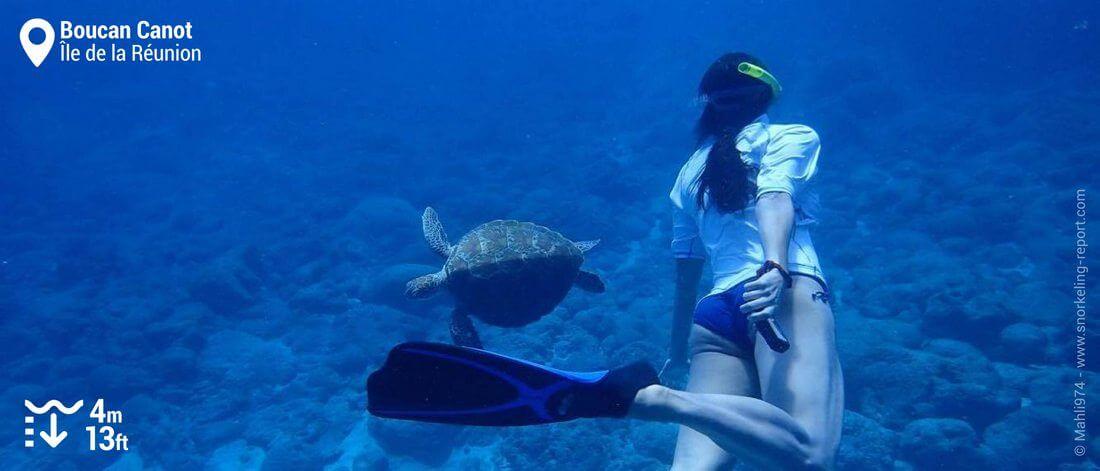 Snorkeling avec une tortue à Boucan Canot, La Réunion