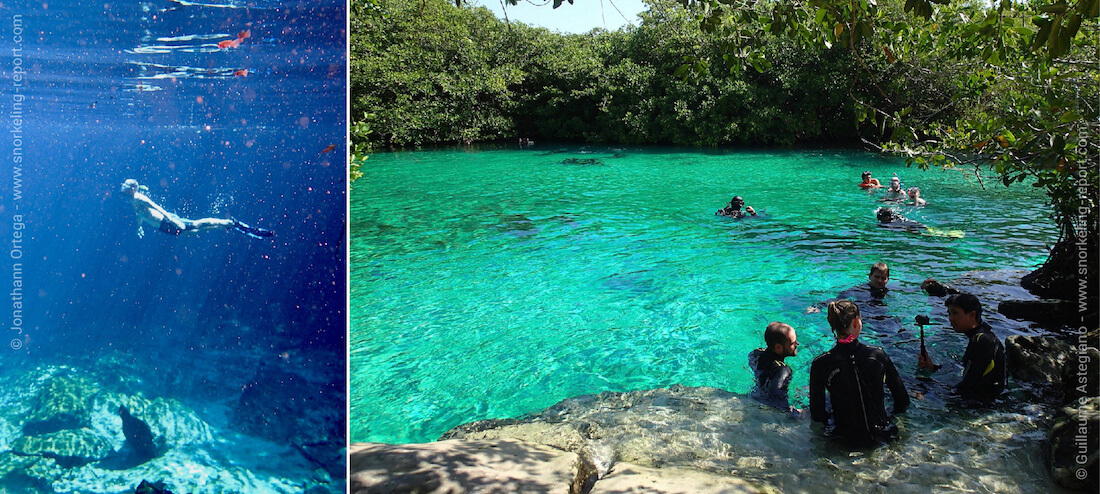 Snorkeling in the cenotes of the Mayan Riviera, Mexico