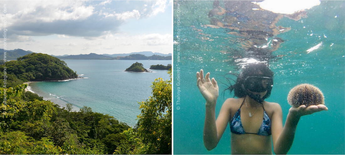 Snorkeling along the Guanacaste coast, Costa Rica