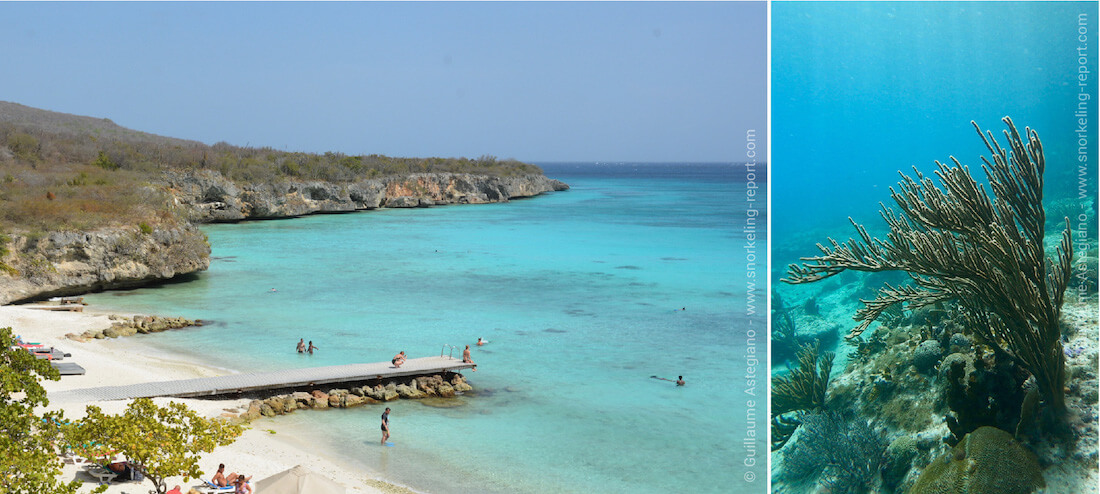 Snorkeling Curacao's beaches