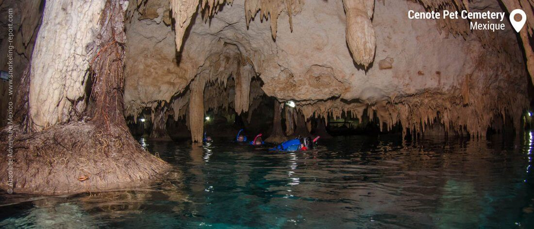 Snorkeling dans les cavités du Cenote Pet Cemetery, Mexique