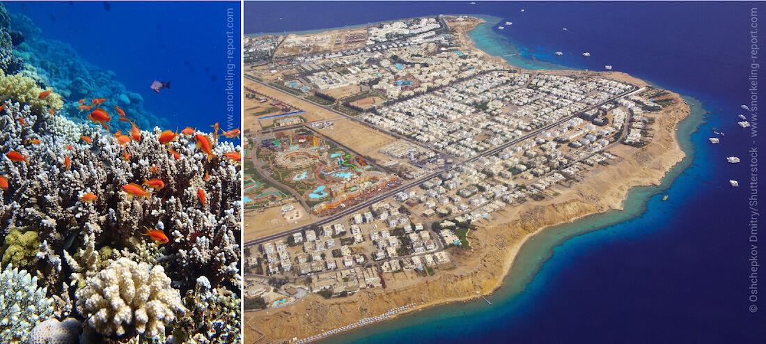 Tombant récifal et vue aérienne de Sharm El-Sheikh - Snorkeling en Egypte