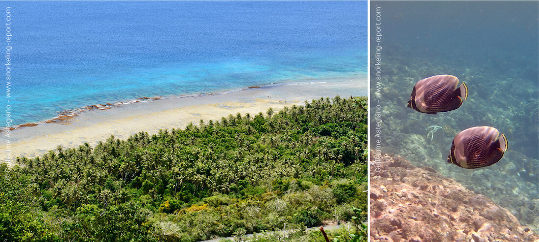 Snorkeling à Guam