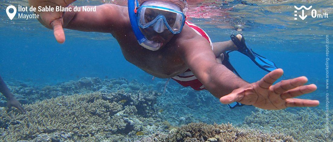 Snorkeling à l'îlot de Sable Blanc du Nord