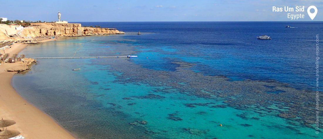 Snorkeling à Ras Um Sid, Sharm El-Sheikh, Mer Rouge