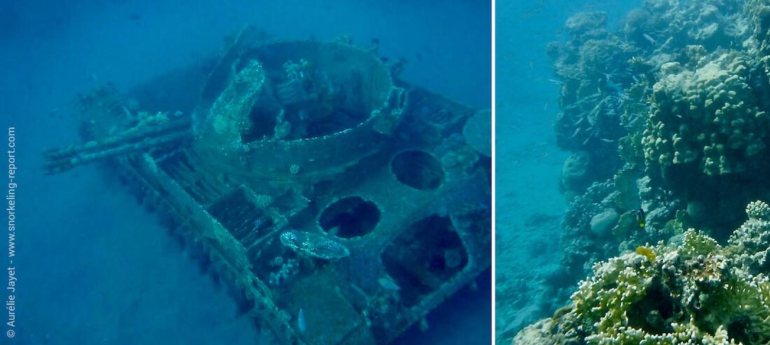 Snorkeling the Tank, Aqaba