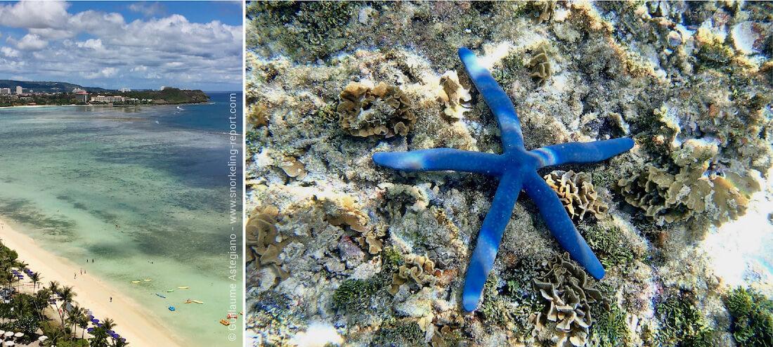Snorkeling à Tumon Bay, Guam