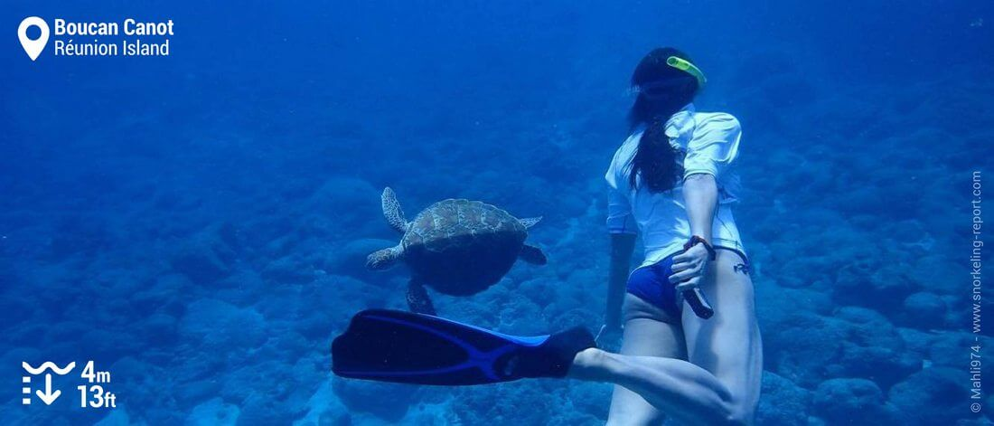 Snorkeling with sea turtle in Boucan Canot beach, Réunion Island