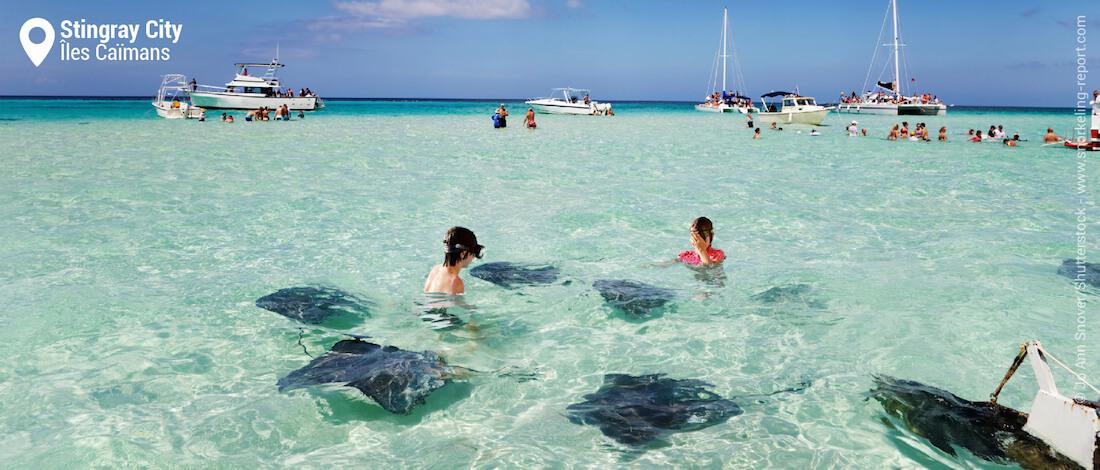 Snorkeling avec les raies pastenague de Stingray City, Iles Caïmans