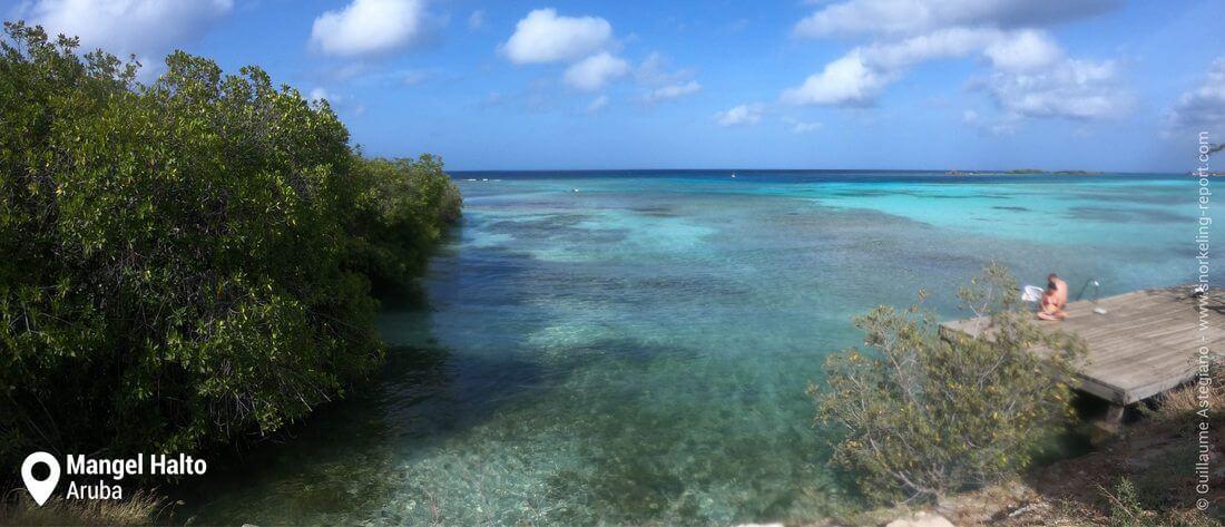 Mangel Halto reef snorkeling, Aruba
