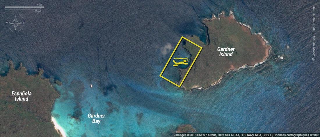 Carte snorkeling à Isla Gardner, Galapagos