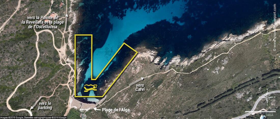 Carte snorkeling à la plage de l'Alga, Calvi