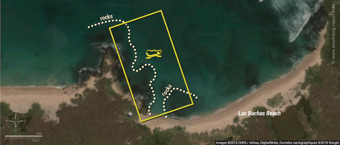 Las Bachas beach snorkeling map, Santa Cruz