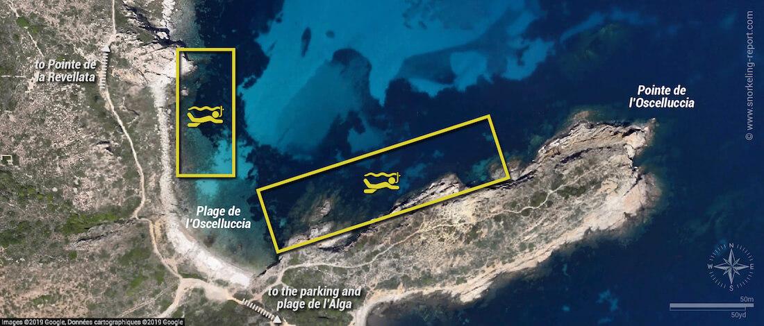 Plage de l'Oscelluccia snorkeling map, Corsica