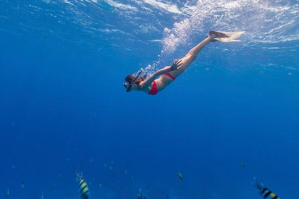 add-snorkeling-spots