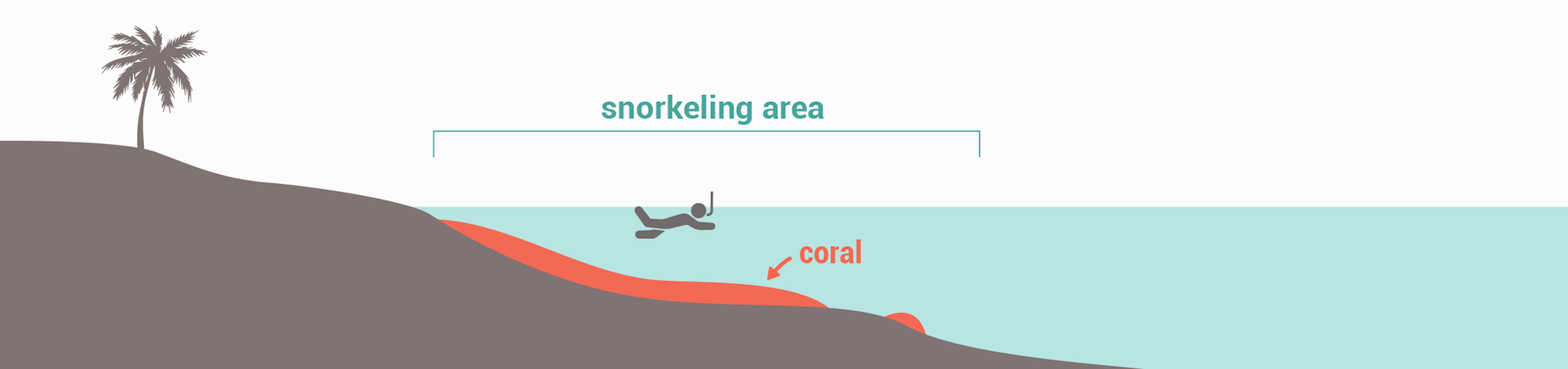 Snorkeling spots types - Narrow fringing reef