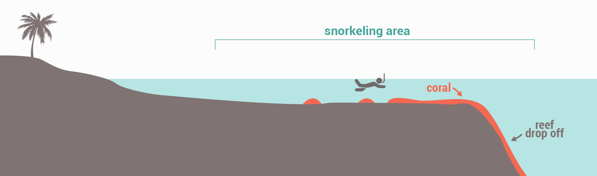 Snorkeling spots types - Reef drop off