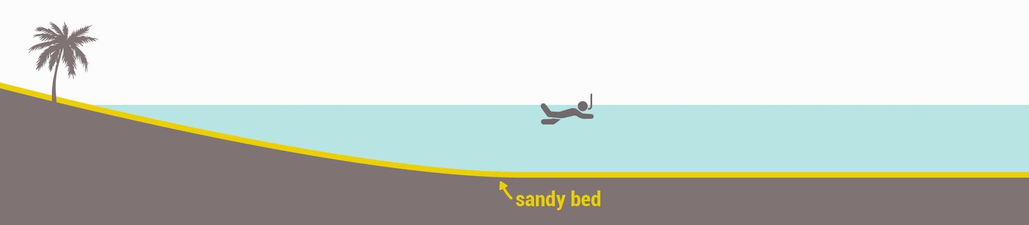 Snorkeling spots types - Sandy seabed
