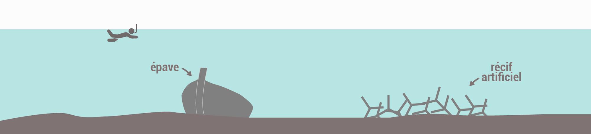 Les types de spots de snorkeling - Epaves et récifs artificiels