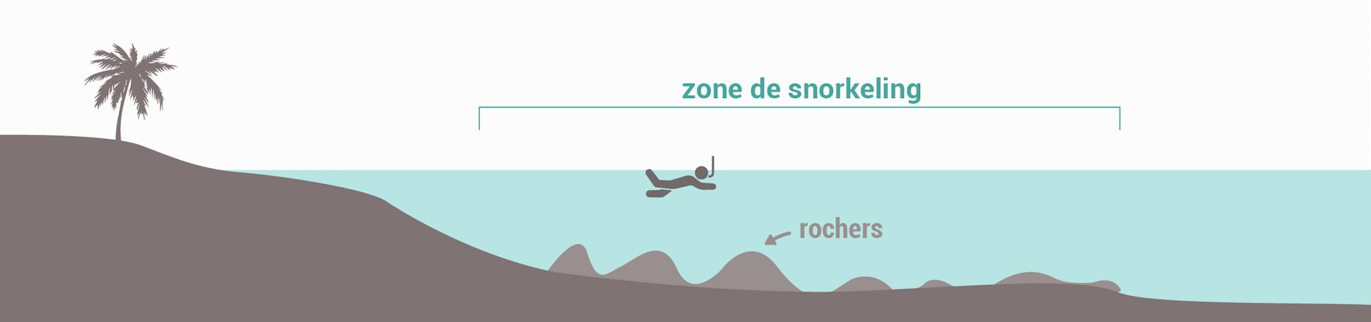 Les types de spots de snorkeling - Fonds rocheux