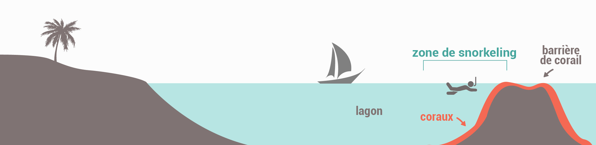 Les types de spots de snorkeling - Récif barrière
