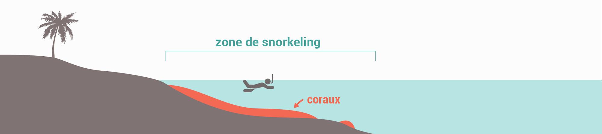 Les types de spots de snorkeling - Récif frangeant étroit