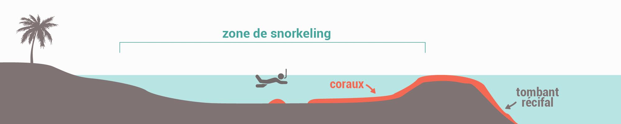 Les types de spots de snorkeling - Récif frangeant fermé