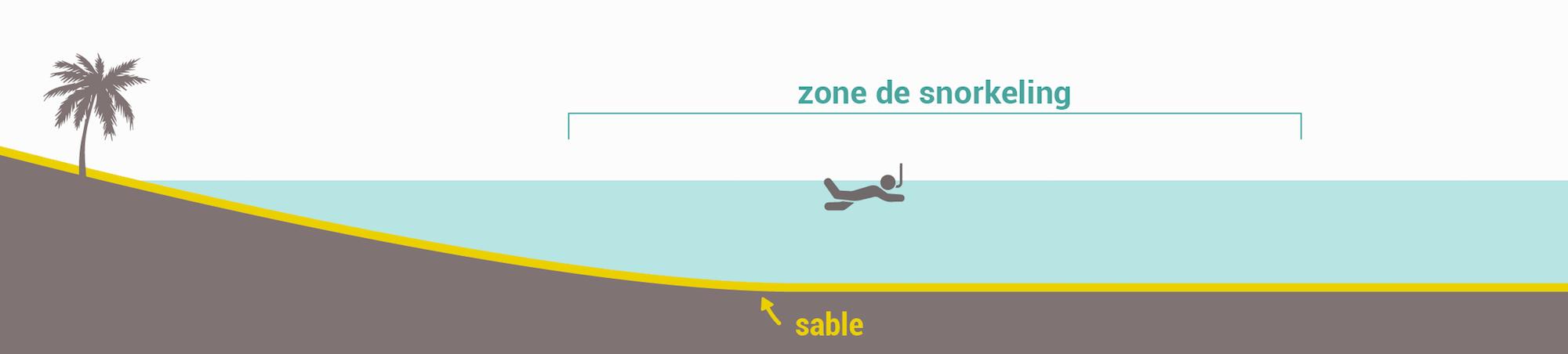 Les types de spots de snorkeling - Fonds sableux
